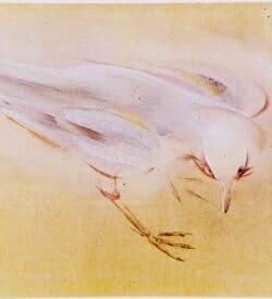 Spirit Bird painting by Morris Graves